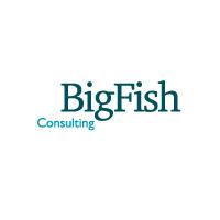 «Большая рыба» на рекламном рынке. Подробности